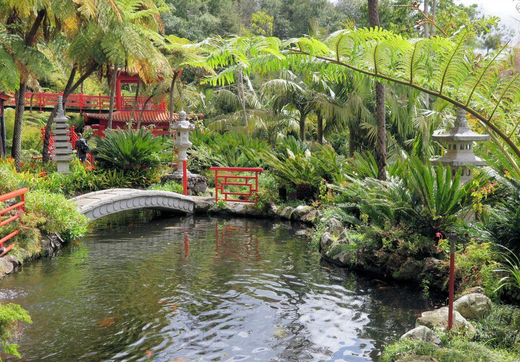 Funchal gardens