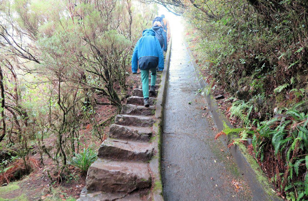 hiking with kids Madeira