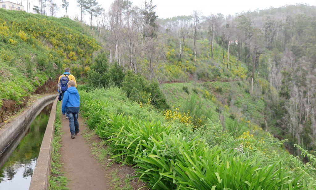 family friendly walks madeira