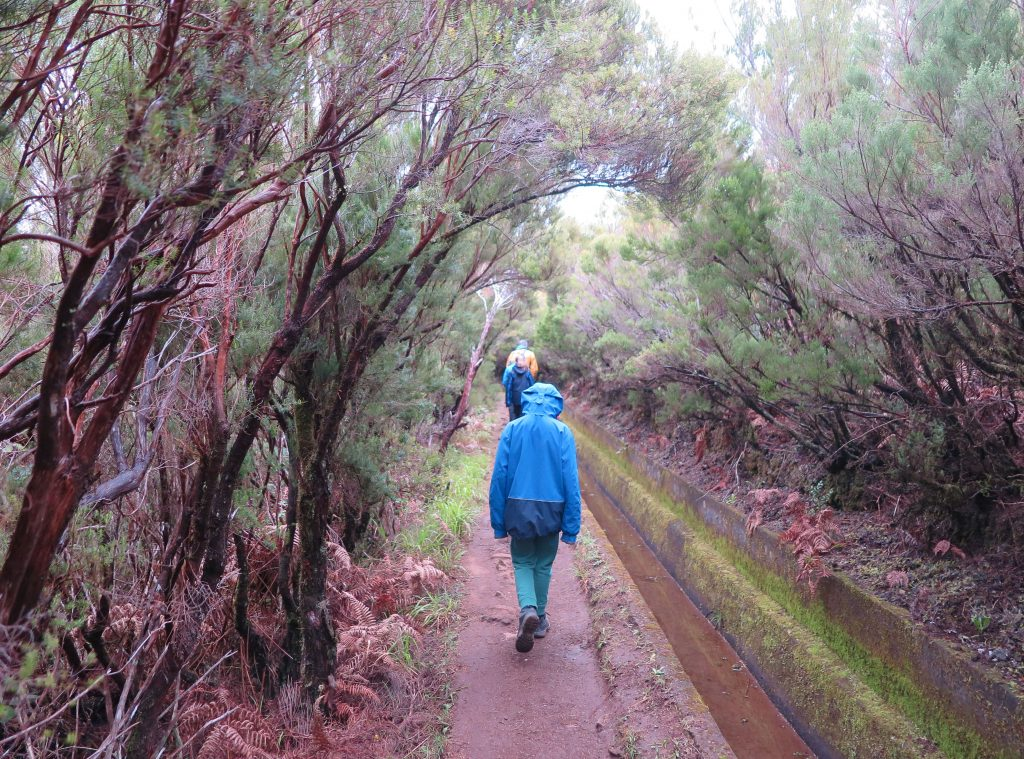 walking with kids in madeira