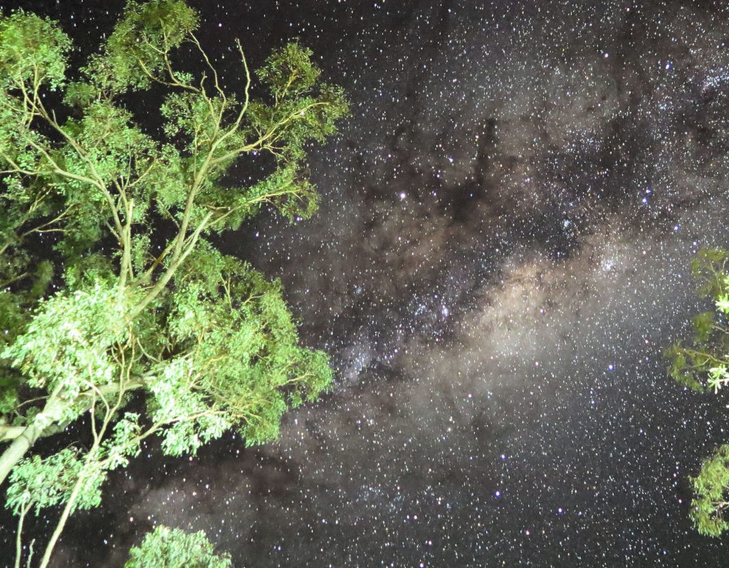 starry sky in the outback