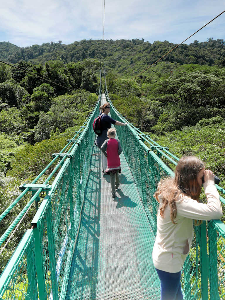 girl looking through binoculars on a green bridge above a tree canopy, family trip to Costa Rica