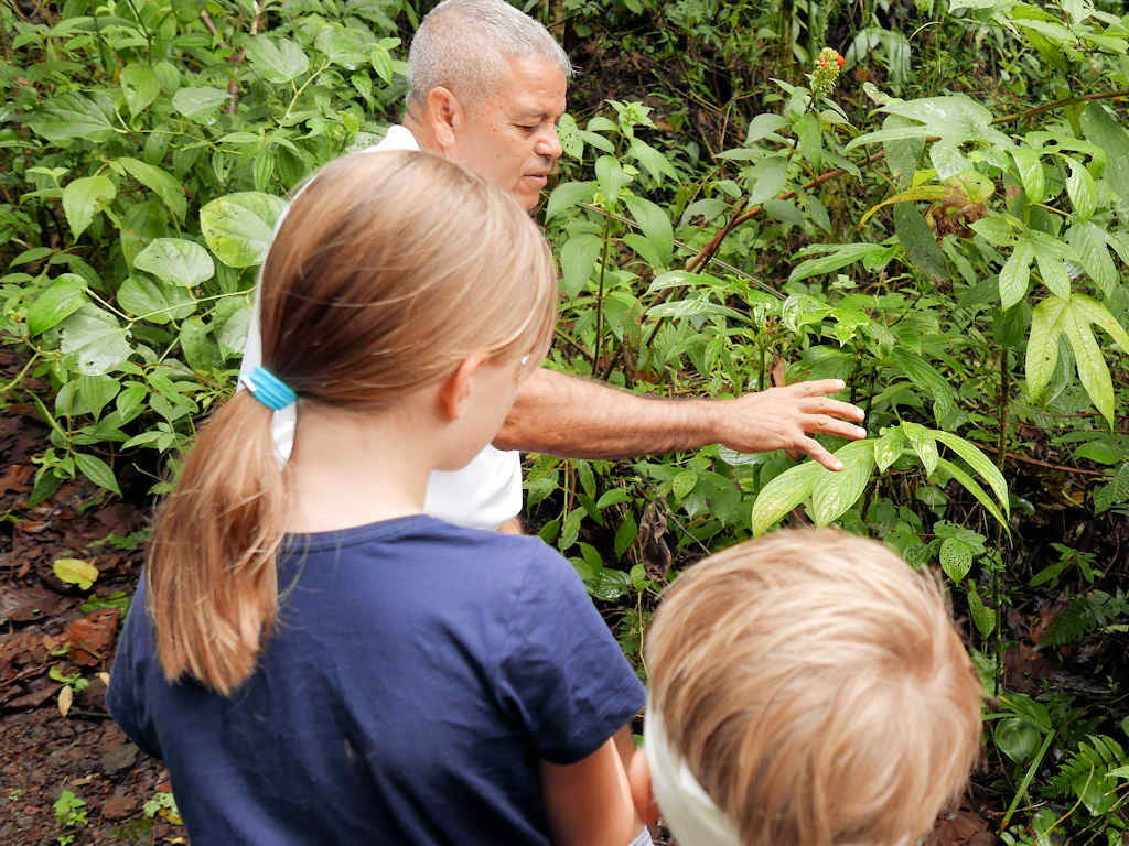 homeschooling on the road, children learning about plants