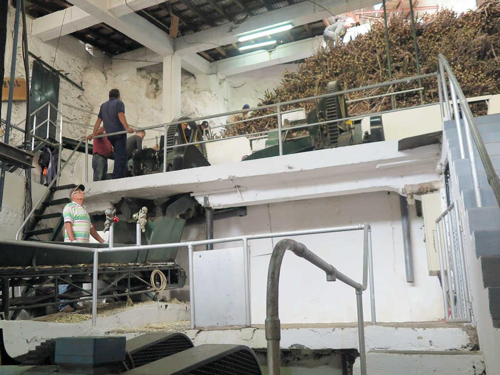 sugar can factory madeira
