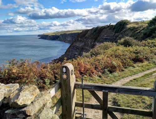 wooden gate on a clifftop path, blue sky and sea, Yorkshire coast