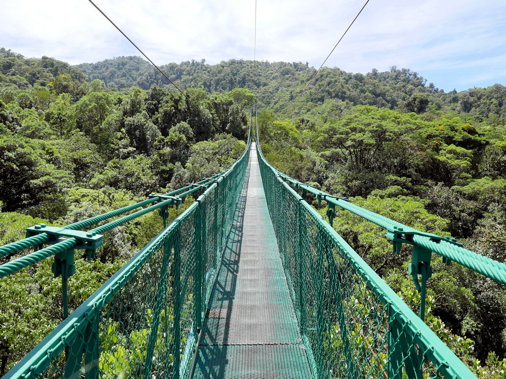 green metal bride over lush green rainforest trees Costa Rica itinerary 10 days