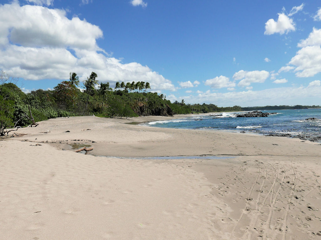 yellow sand beach, blue sea and sky, green palm trees 10 days in Costa Rica
