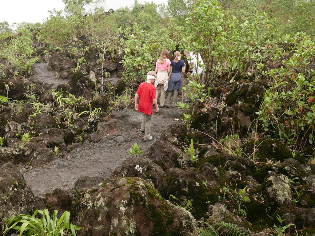 children walking in a black lava field with green plants, Arenal Costa Rica