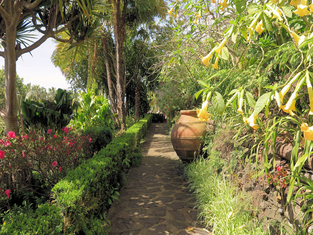 stone path with tropical flowers and palm trees, tips for a Madeira family holiday