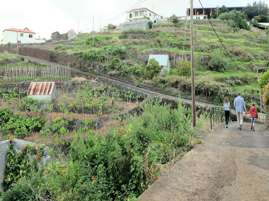man girl and boy walking on a narrow tarmac road surrounded by crops and small white houses, villas in Madeira